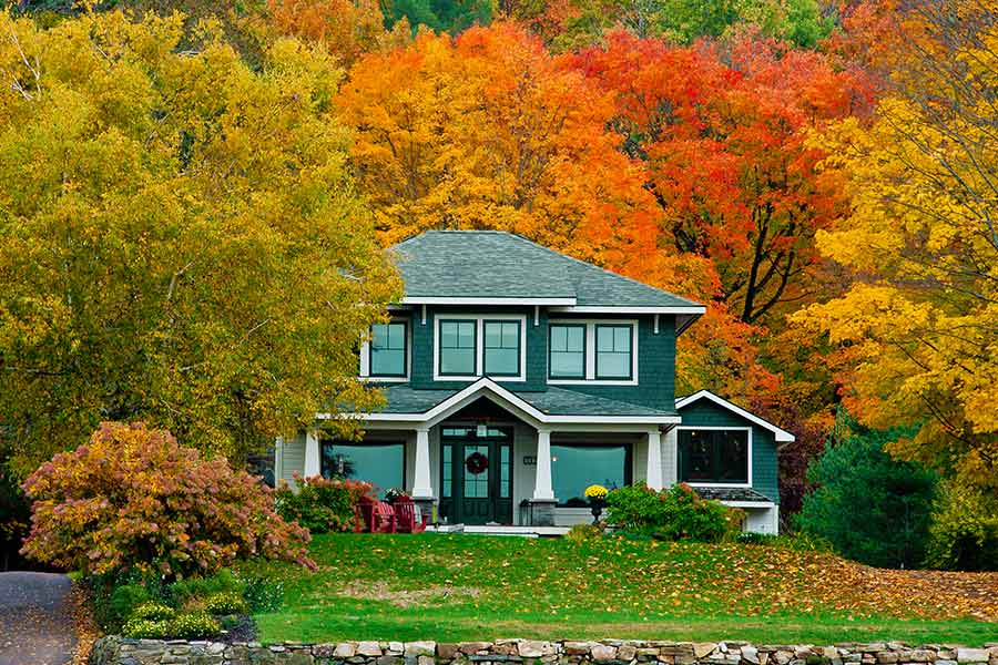 House with fall trees